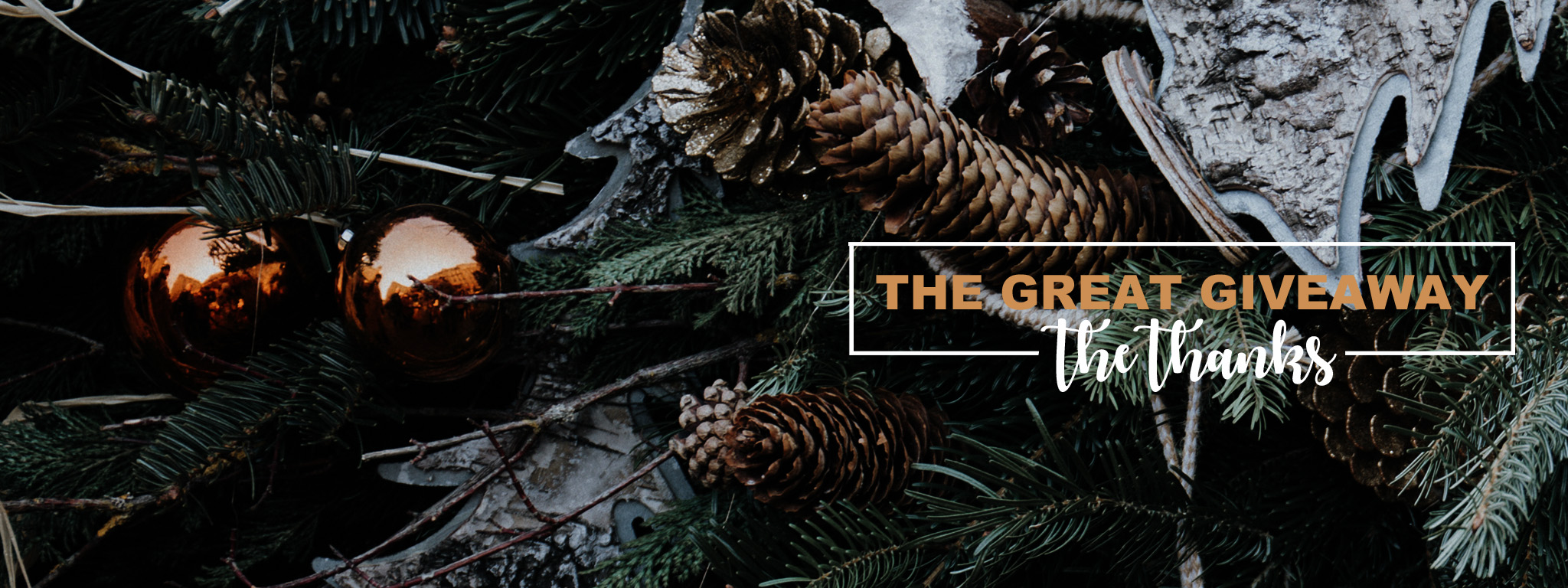 The Great Giveaway – the Thanks