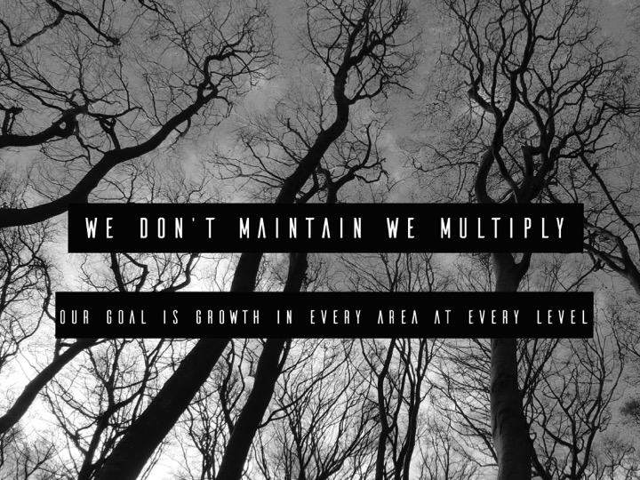 We don't maintain, we multiply – Our goal is growth in every area and at every level.